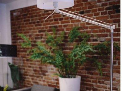 """5 способов создать """"зелёный"""" офис"""