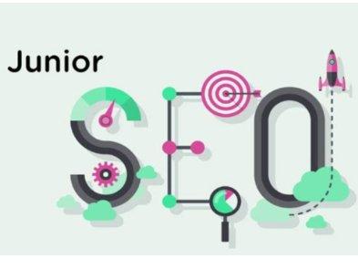 Как стать SEO Junior: не коротко, но только о главном