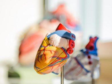 Український стартап Cardio Vision розробив сервіс для боротьби із хворобами серця
