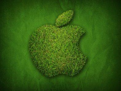 Что Apple бережет больше: людей или природу?