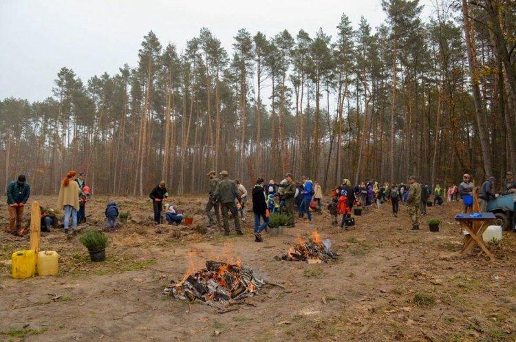 10 000 дерев і 30 000 гривень на благодійність: у SoftServe минув місяць добрих справ