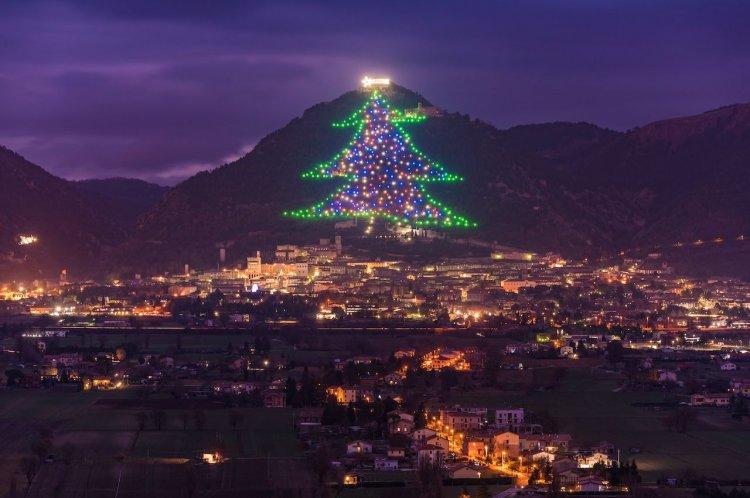 Технологичные и не только: семь самых удивительных рождественских елок мира