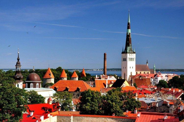 IT без кордонів: як українцю зареєструвати бізнес у Естонії та Британії