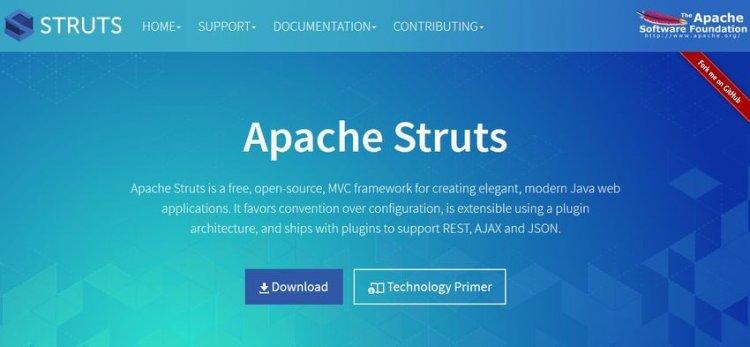 Struts Java Web Framework