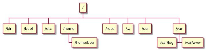 Ієрархічні бази даних