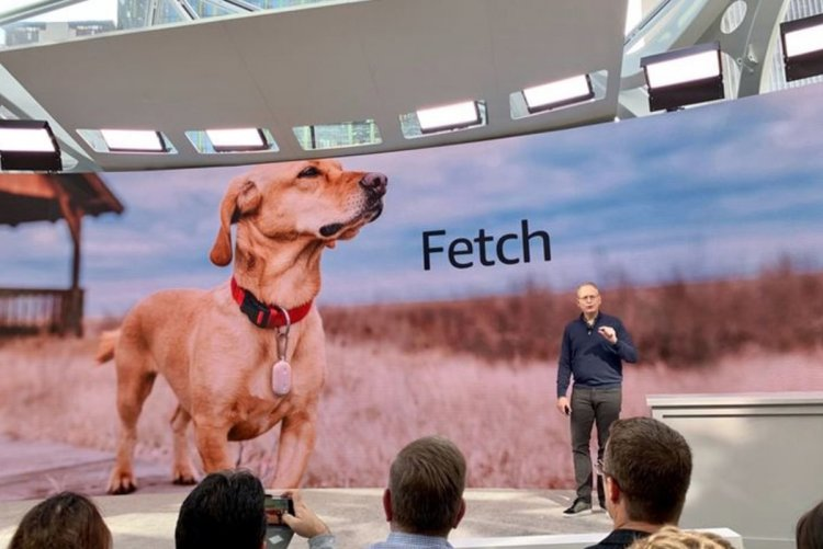 Amazon Fetch