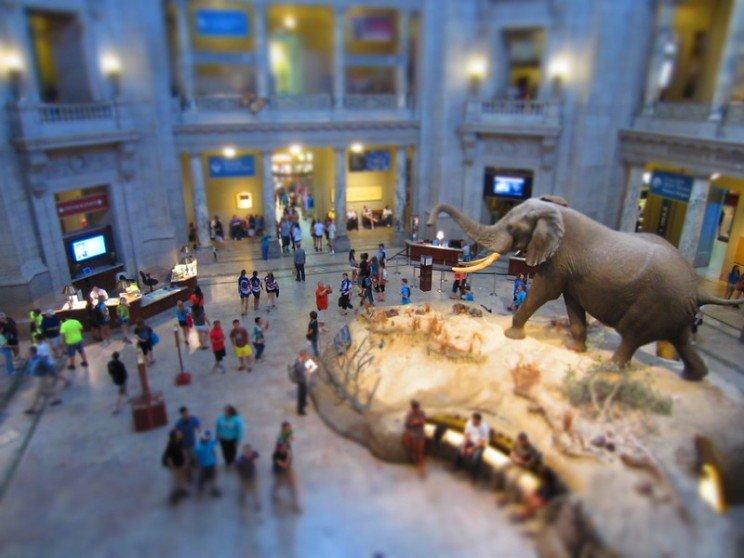 10 наукових і технологічних музеїв, які можна відвідати онлайн