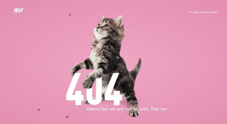 Codename 404: веб-майстер