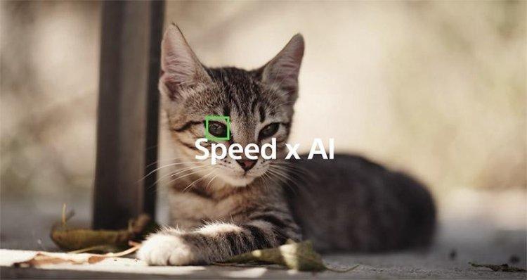 Sony A6400: AI, который распознает глаза животных