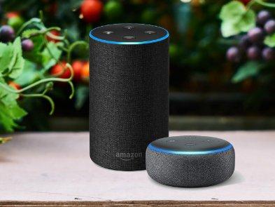 Хакеры получили $60,000 за взлом Amazon Echo