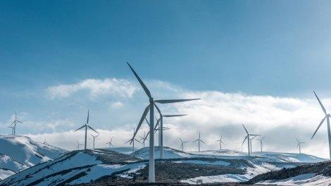 Відновлювана енергія шкодить планеті