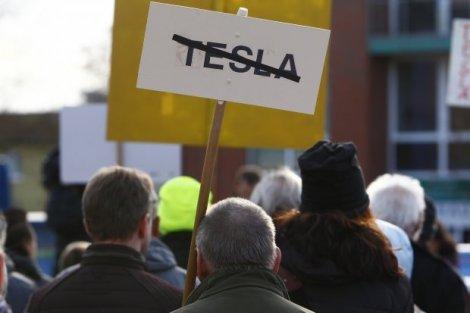 Протести проти Tesla: німецький суд заборонив компанії вирубувати дерева біля Берліна