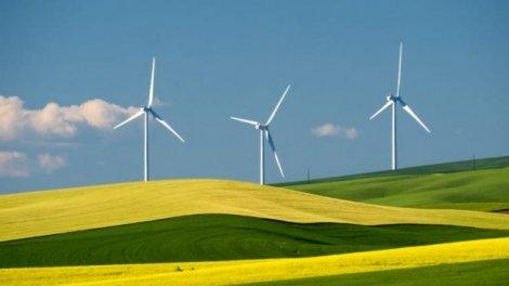 Вітер став найзатребуванішим джерелом чистої енергії в США